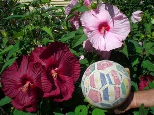 Размеры цветка