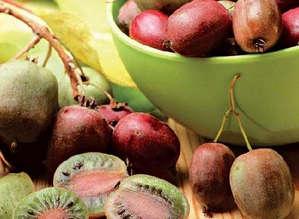 Спелые ягоды актидинии