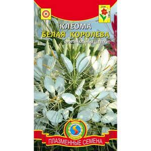 Упаковка с семенами клеомы