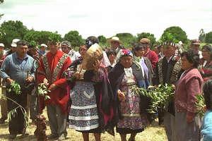 Арауканы индейцы
