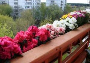 Годеция на балконе