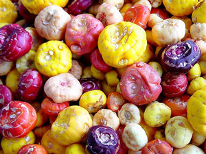 Цветные луковицы