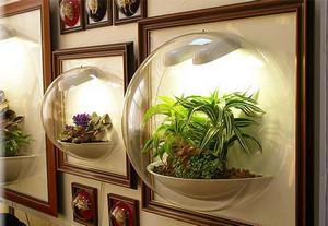 В аквариумах