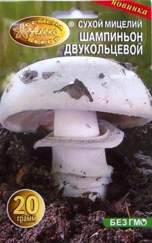 Мицелий для дома