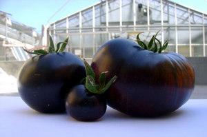 Тепличные плоды